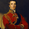 Figure 1: Portrait of Arthur Wellesley, 1st Duke of Wellington (1814)