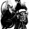 Figure 9: One of the many contemporary cartoons and caricatures casting Darwin as a monkey or an ape. Note the phallic and serpentine quality of Darwin's tail.